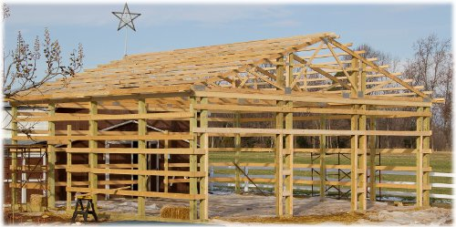 Pole Shed Designs Build An Affordable 10 215 12 Shed