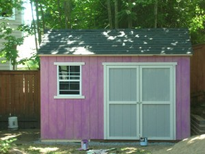 Shed Door Design Ideas Tsle Looking For Shed Door Design Cool  Shed Door Design Ideas